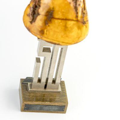 apdovanojimai-13